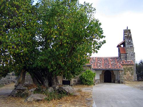 Moral frente a la iglesia de Cozcurrita