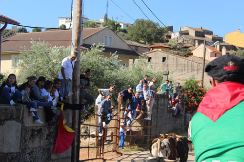 El público contemplando el paso de los astados