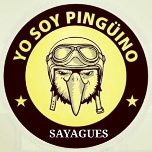 concentración pingüinos 2015 apoyo