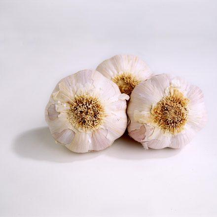 garlic-1533730