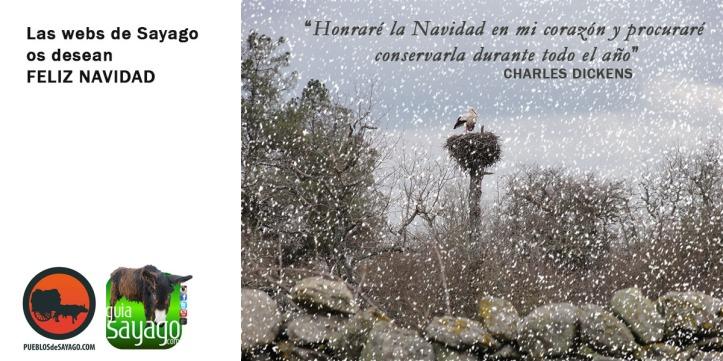 felicitacion_navidad_sayago1617