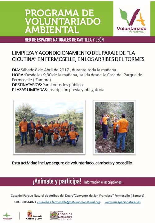 fermoselle_cartel_voluntariado_ambiental_cicutina