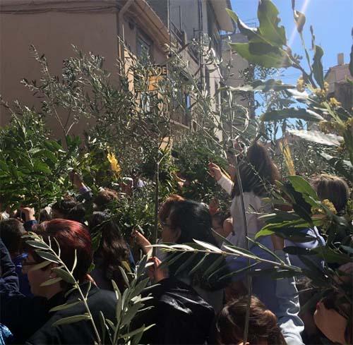 fermoselle_procesion_domingo_de_ramos