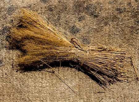 piñerino, escoba usada en el noroeste de españa para limpiar paredes antes de encalar o quitar ceniza de la chimenea