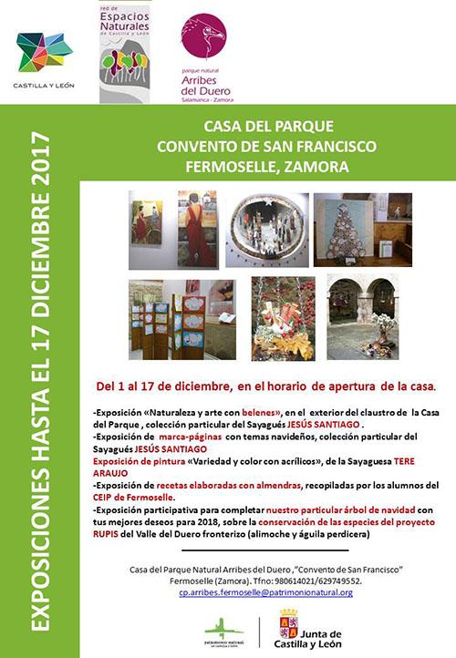 fermoselle_exposicion_casa_del_parque_jesus_santiago_panero_tere_araujo