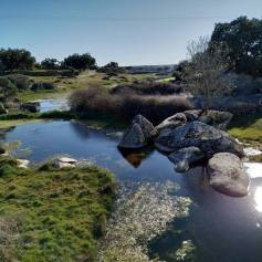 rivera de carbellino / Fotos de Juan Antonio Puente Pascual