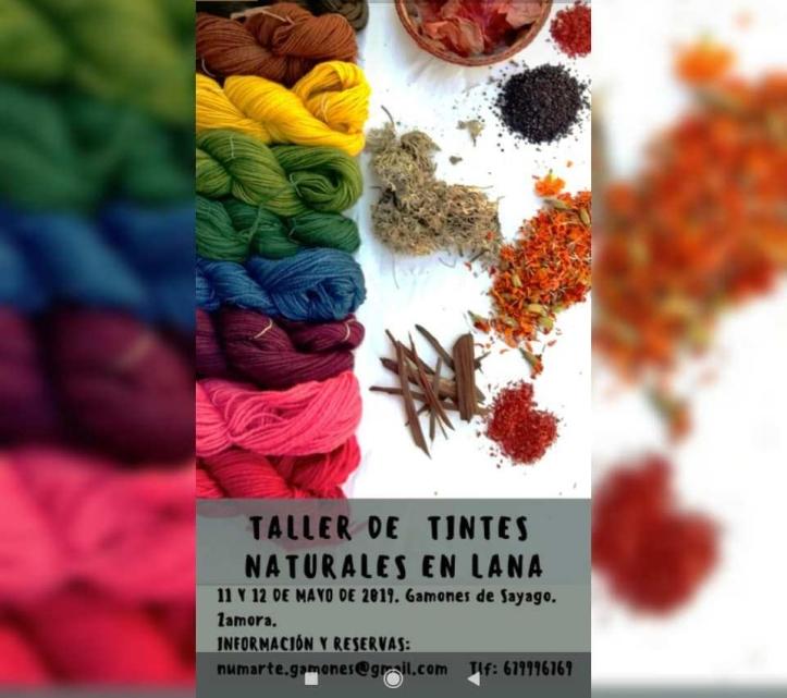 taller de tintes naturales en lana
