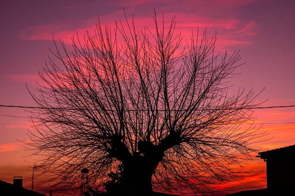 atardecer de otoño en torregamones, comarca de sayago, zamora