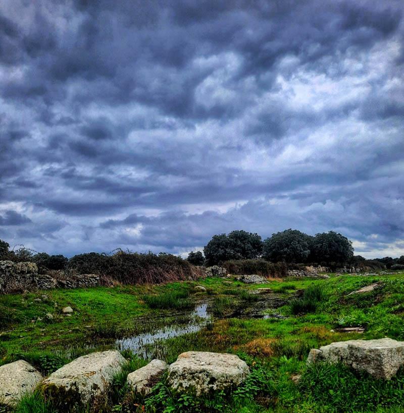 rivera de roelos en otoño, comarca de sayago, provincia de zamora